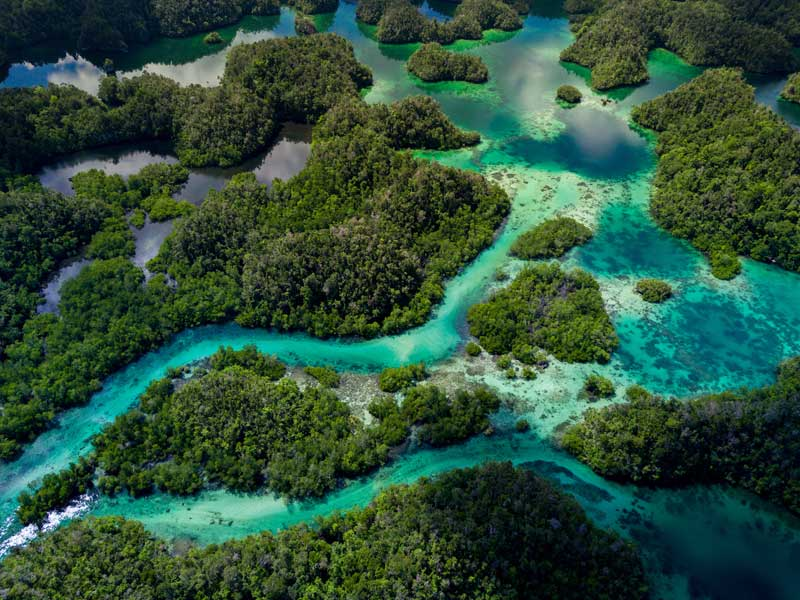 discover-papua-blog-raja-ampat