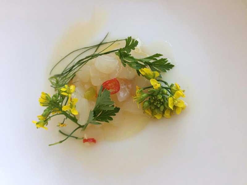 chef-steven-blog-03