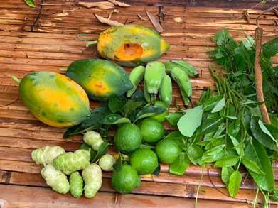 bangkoks-garden-eden-blog-04