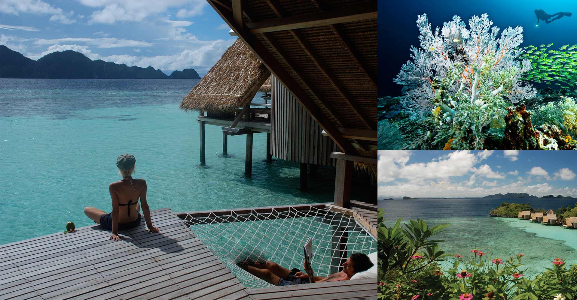 Raja ampat eco dive resort misool eco resort indonesia - Dive resort raja ampat ...