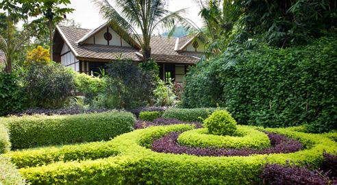 Deluxe Garden View