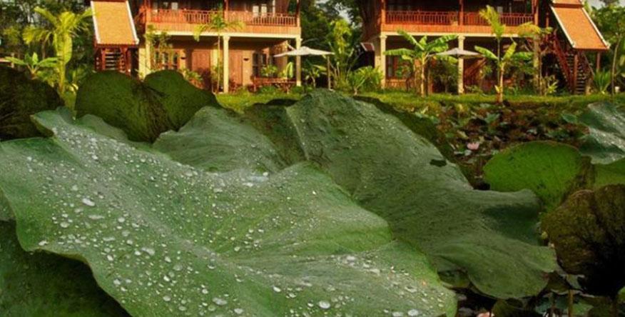 Les Maisons Wat Kor