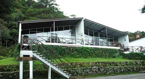 Peak Lodge (4 units)
