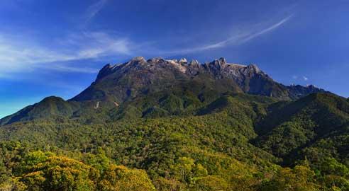 Kinabalu Park highlight