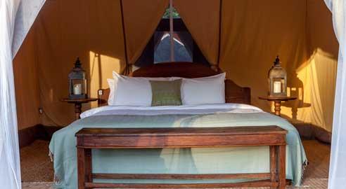 Tents (5 units)