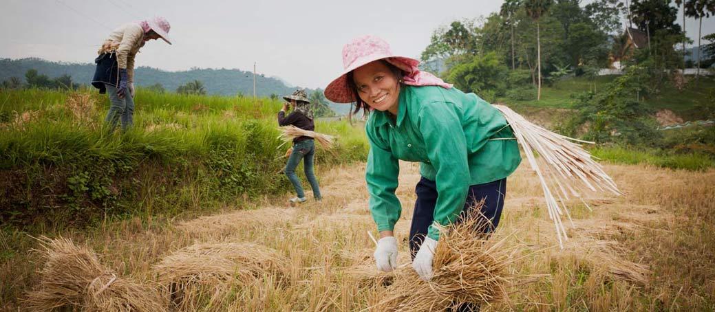 North Laos Explorer Offer