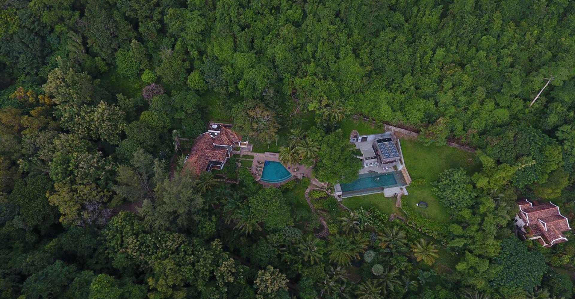Villa Des Palmes