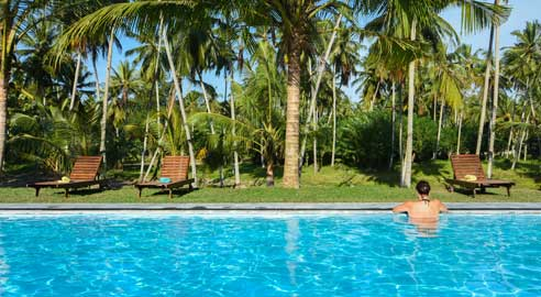 Ambarella Lodge & Spice Garden highlight