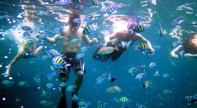 Phuket Cruises highlight