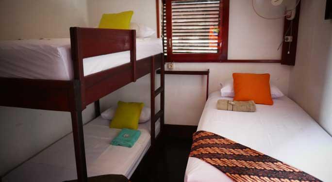 Family Cabin (1 unit)